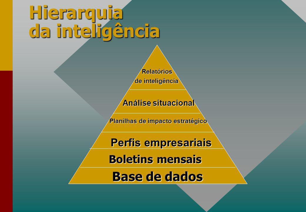 Hierarquia da inteligência Boletins mensais Base de dados Perfis empresariais Planilhas de impacto estratégico Análise situacional Relatórios de inteligência