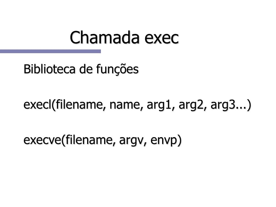 Chamada exec Biblioteca de funções execl(filename, name, arg1, arg2, arg3...) execve(filename, argv, envp)