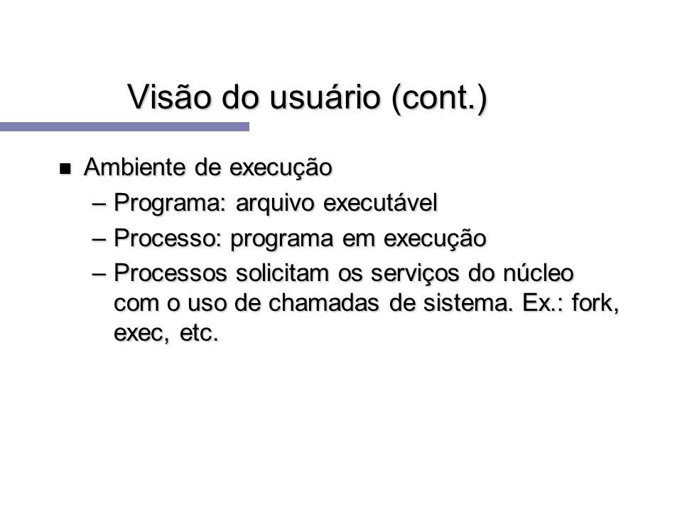 Visão do usuário (cont.) n Ambiente de execução –Programa: arquivo executável –Processo: programa em execução –Processos solicitam os serviços do núcl