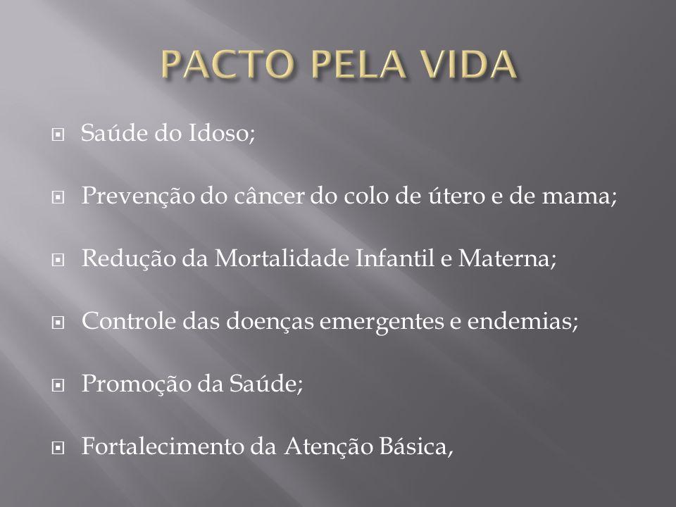 Saúde do Idoso; Prevenção do câncer do colo de útero e de mama; Redução da Mortalidade Infantil e Materna; Controle das doenças emergentes e endemias;