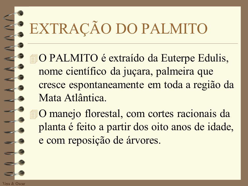 PRODUTO PALMITO