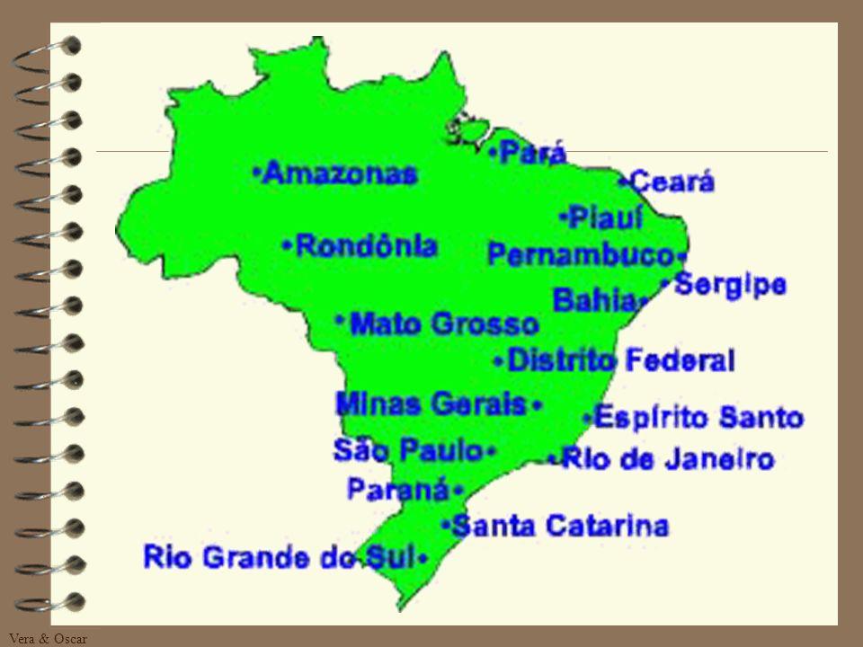 Vera & Oscar DISTRIBUIÇÃO Os estados que a empresa Hemmer possui representante e distribuidor são: Rio Grande do Sul; Santa Catarina; Paraná; São Paul