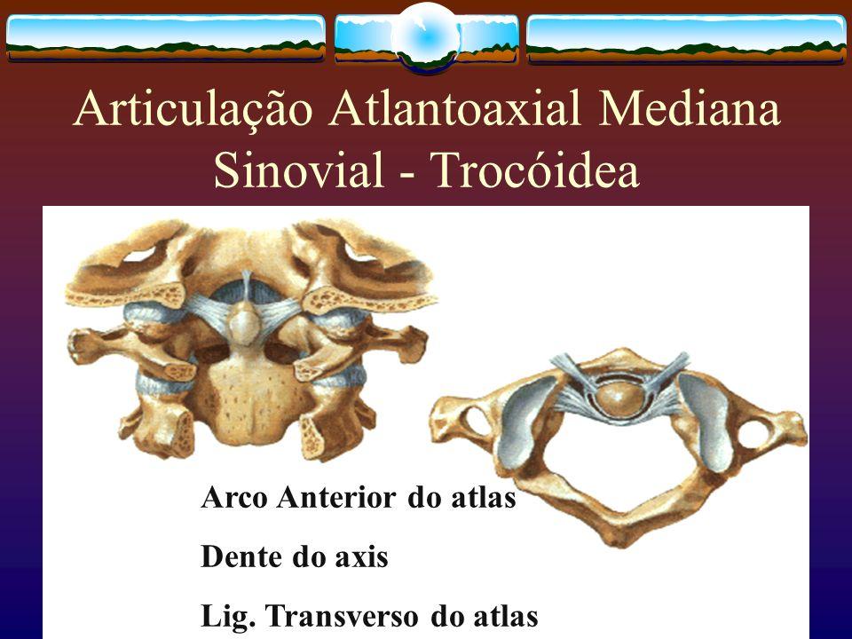 Articulação Atlantoaxial Mediana Sinovial - Trocóidea Arco Anterior do atlas Dente do axis Lig. Transverso do atlas
