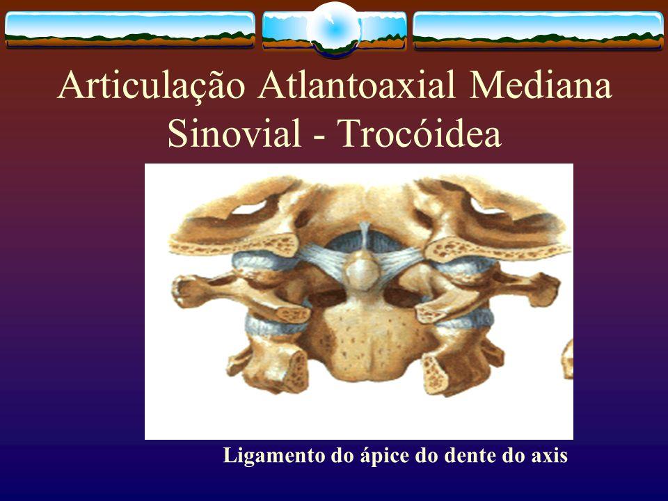 Articulação Atlantoaxial Mediana Sinovial - Trocóidea Ligamento do ápice do dente do axis