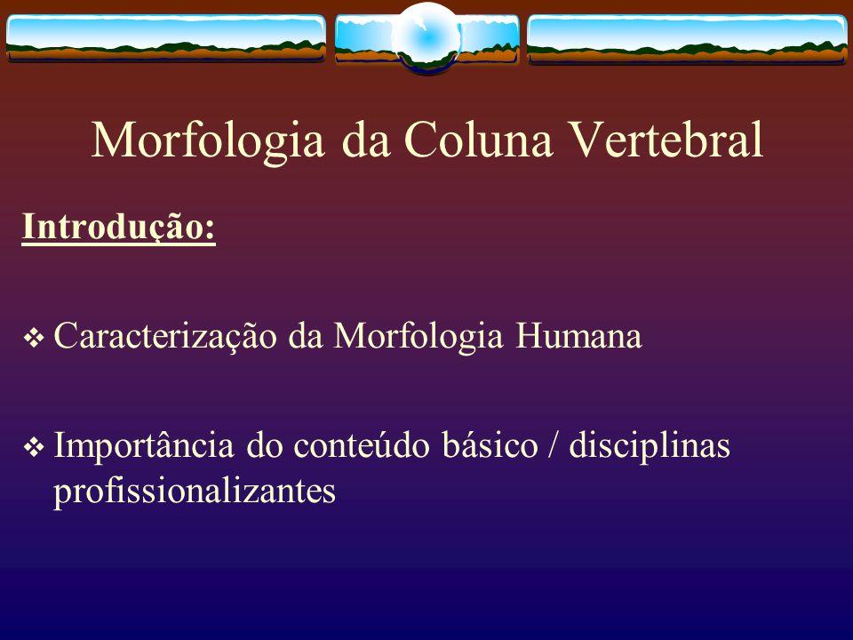 Morfologia da Coluna Vertebral Introdução: Caracterização da Morfologia Humana Importância do conteúdo básico / disciplinas profissionalizantes