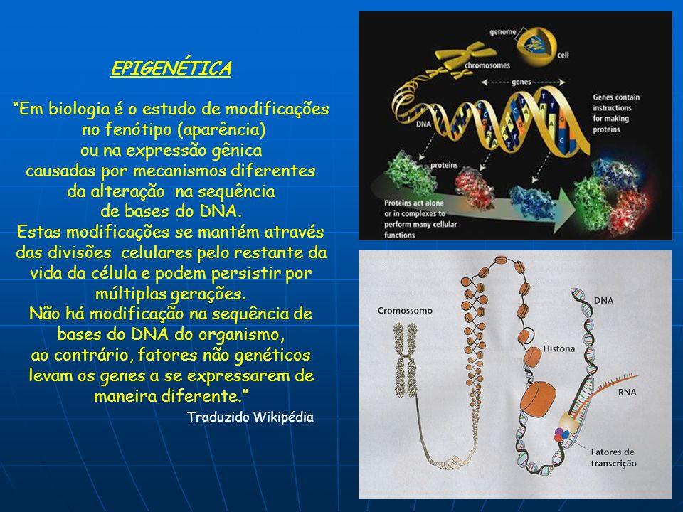 EPIGENÉTICA Em biologia é o estudo de modificações no fenótipo (aparência) ou na expressão gênica causadas por mecanismos diferentes da alteração na s