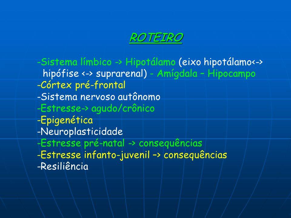 ROTEIRO -Sistema límbico -> Hipotálamo (eixo hipotálamo hipófise suprarenal) - Amígdala – Hipocampo -Córtex pré-frontal -Sistema nervoso autônomo -Est
