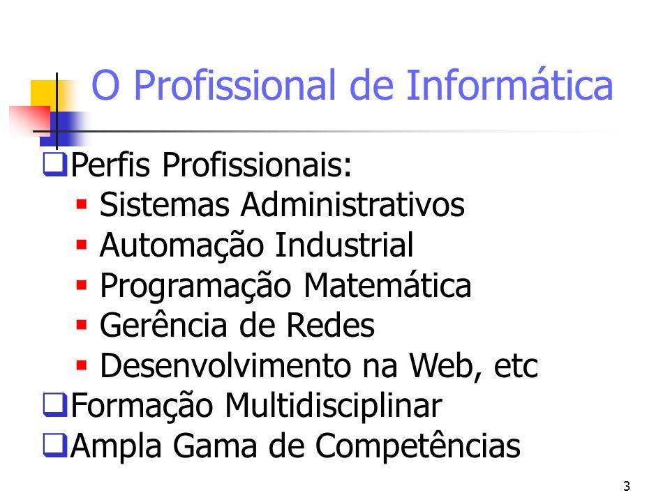 3 O Profissional de Informática Perfis Profissionais: Sistemas Administrativos Automação Industrial Programação Matemática Gerência de Redes Desenvolv