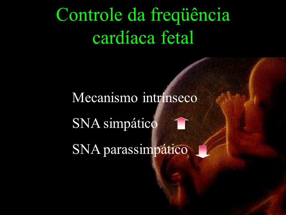 Controle da freqüência cardíaca fetal Mecanismo intrínseco SNA simpático SNA parassimpático