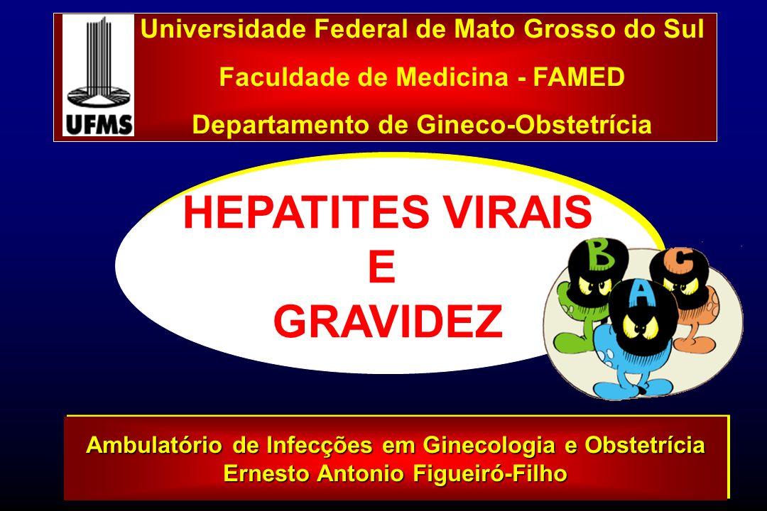 HEPATITES e GRAVIDEZ Seis tipos de vírus causadores Hepatite: A, B, C, D, E e G Vírus A, B e C não influenciam diretamente curso gestação Infecção Vírus E, adquirido 3º trimestre, se associa hepatite fulminante A transmissão vertical (TV) ocorre período periparto (Duff, 1998; Miechielsen & Damme, 1999) Seis tipos de vírus causadores Hepatite: A, B, C, D, E e G Vírus A, B e C não influenciam diretamente curso gestação Infecção Vírus E, adquirido 3º trimestre, se associa hepatite fulminante A transmissão vertical (TV) ocorre período periparto (Duff, 1998; Miechielsen & Damme, 1999)