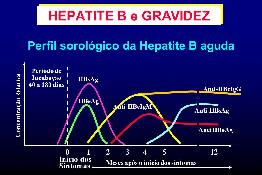 Perfil sorológico da Hepatite B aguda 01234512 Anti-HBcIgG Anti-HBsAg HBeAg Anti-HBcIgM Início dos Sintomas Meses após o início dos sintomas Período d
