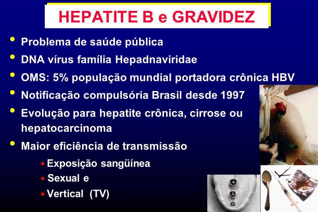 Principais vias de transmissão Sexual Exposição percutânea/mucosas Vertical (TV) Adultos contaminados: 90% evoluem para cura Recém-nascidos com TV: 70 a 90% infectados cronicamente Possibilidade de profilaxia TV Rastreamento sorológico da hepatite B obrigatório no pré-natal HEPATITE B e GRAVIDEZ