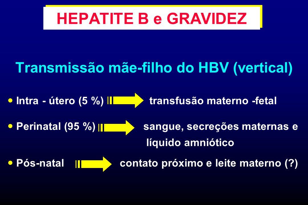 Transmissão mãe-filho do HBV (vertical) Intra - útero (5 %) transfusão materno -fetal Perinatal (95 %) sangue, secreções maternas e líquido amniótico