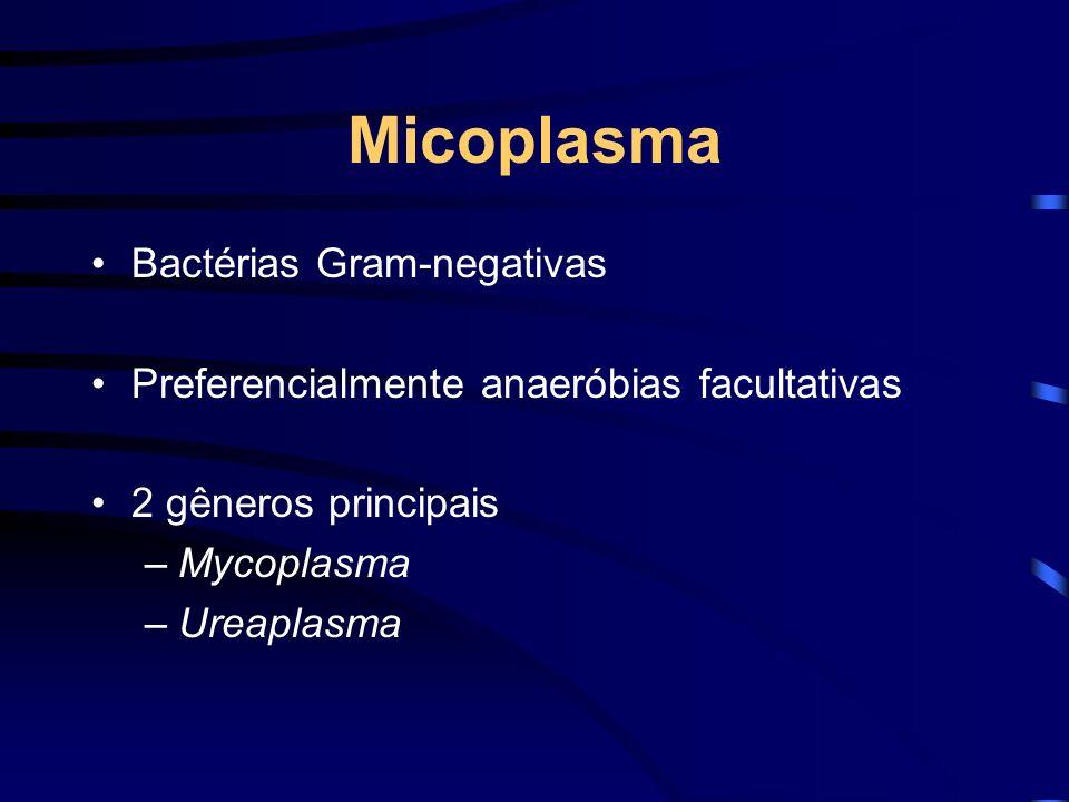 Micoplasma Bactérias Gram-negativas Preferencialmente anaeróbias facultativas 2 gêneros principais –Mycoplasma –Ureaplasma