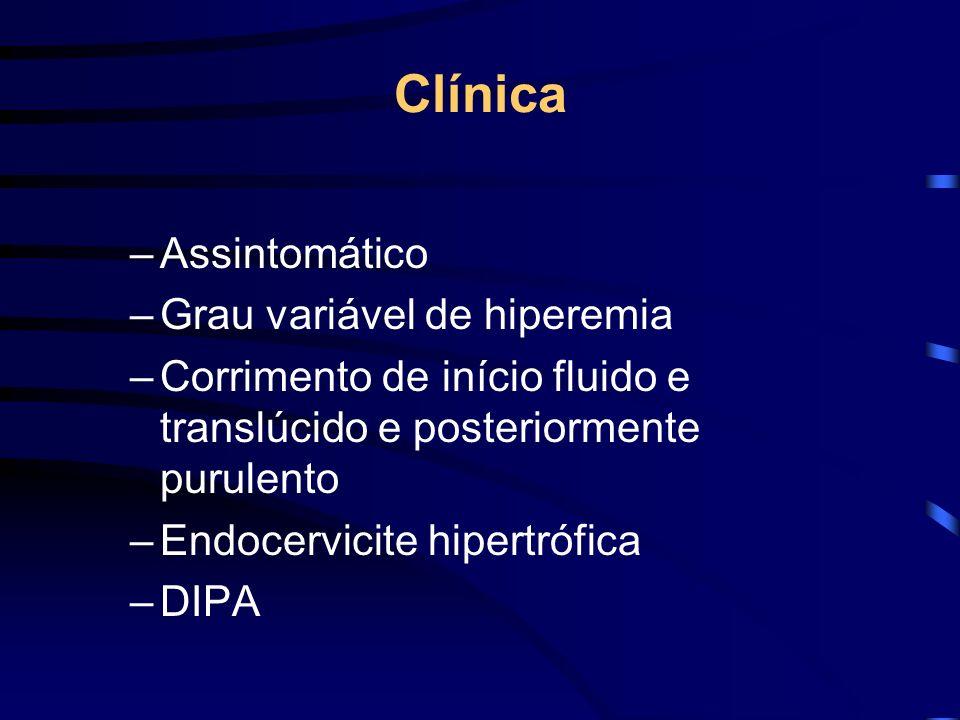 Clínica –Assintomático –Grau variável de hiperemia –Corrimento de início fluido e translúcido e posteriormente purulento –Endocervicite hipertrófica –