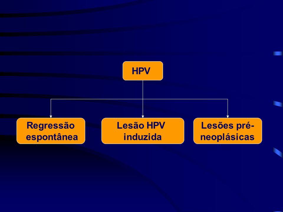 HPV Lesão HPV induzida Regressão espontânea Lesões pré- neoplásicas
