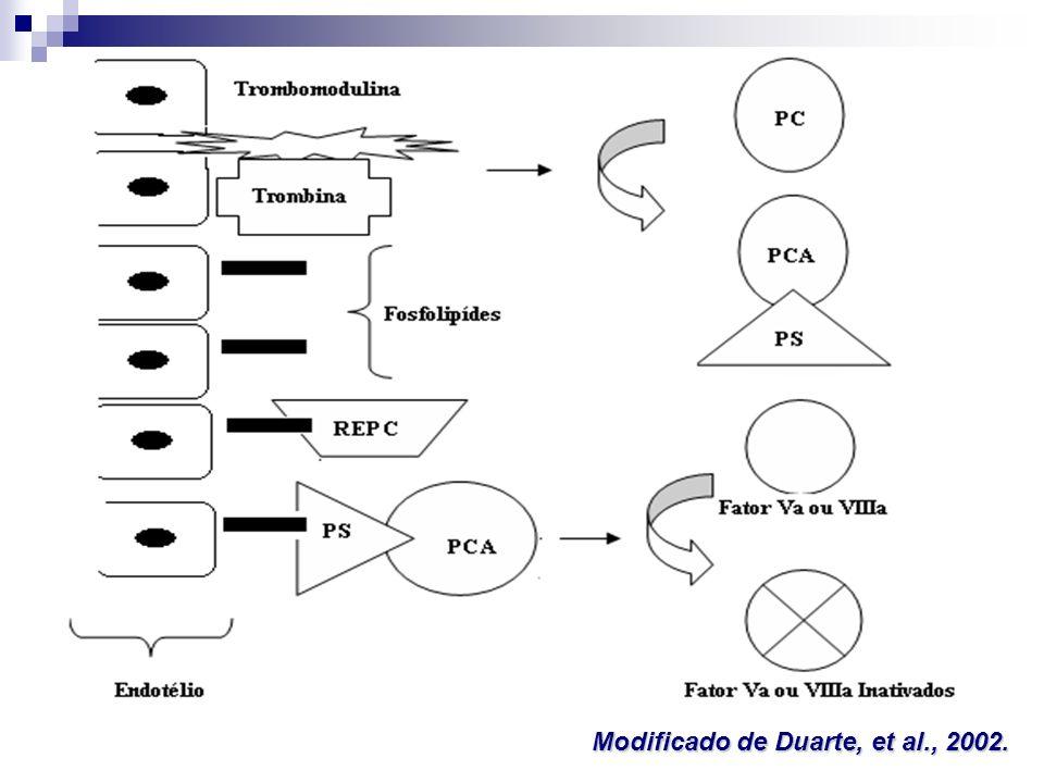 Deficiências de PC e PS: defeitos em uma das vias da anticoagulação - sistema da PC ativada; Importante inibidor do processo de coagulação; Reações potencializadas pela PS - co-fator não enzimático; PCativada - ligação da trombina ao receptor endotelial trombomodulina; Inibição da coagulação, cliva e inativa os fatores Va e VIIIa; Deficiência de Proteína C e S Franco, et al., 2001; Duarte, et al., 2002; Berek, 2005