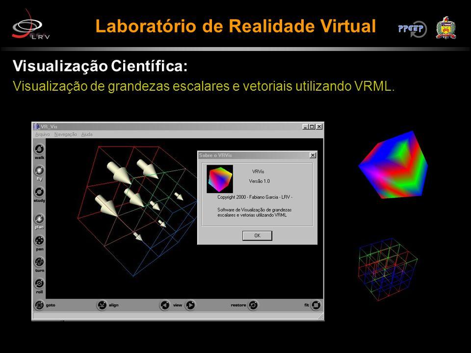 Visualização Científica: Visualização de grandezas escalares e vetoriais utilizando VRML.