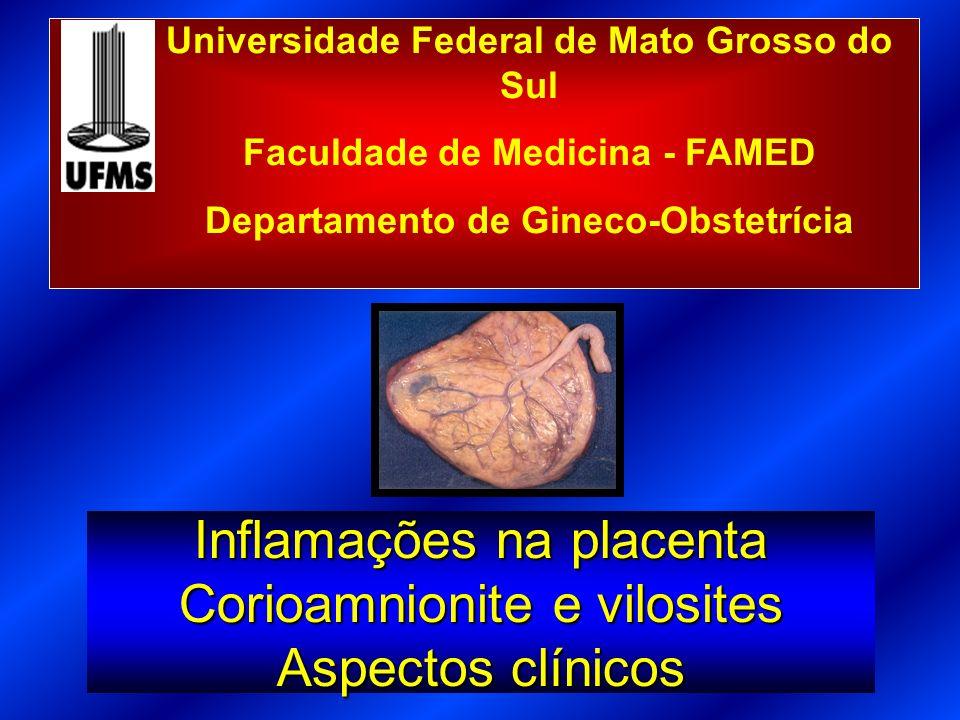 Coriamnionite/Vilosite Corioamnionite: infecção ascendenteCorioamnionite: infecção ascendente Vilosite: infecção hematogênicaVilosite: infecção hematogênica