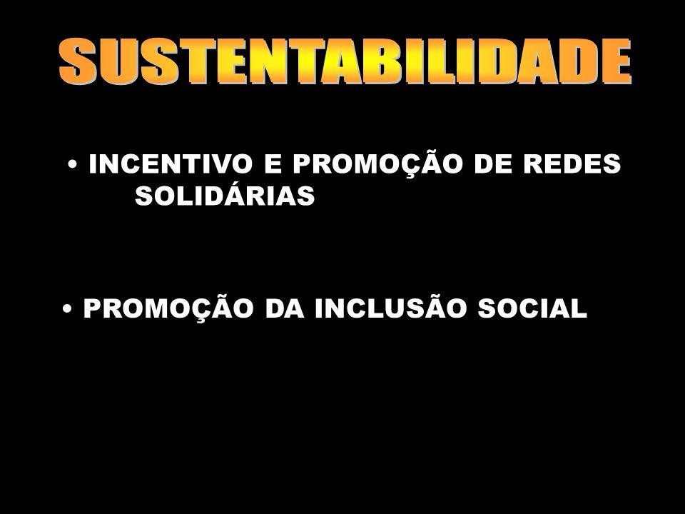 Marilene Grandesso24 INCENTIVO E PROMOÇÃO DE REDES SOLIDÁRIAS PROMOÇÃO DA INCLUSÃO SOCIAL