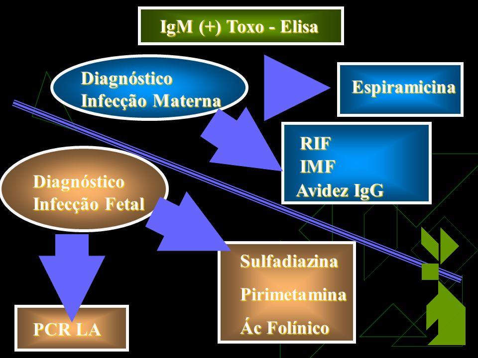 IgM (+) Toxo - Elisa Diagnóstico Infecção Materna RIF IMF Avidez IgG Diagnóstico Infecção Fetal PCR LA Espiramicina SulfadiazinaPirimetamina Ác Folínico