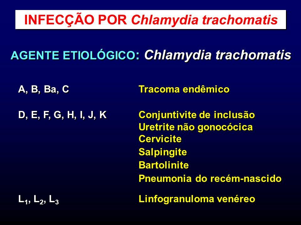 AGENTE ETIOLÓGICO : Chlamydia trachomatis A, B, Ba, C Tracoma endêmico D, E, F, G, H, I, J, K Conjuntivite de inclusão Uretrite não gonocócica Cervici