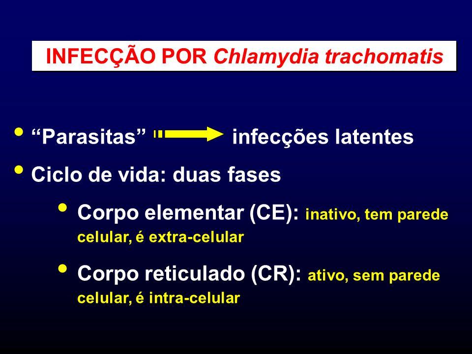 Parasitas infecções latentes Ciclo de vida: duas fases Corpo elementar (CE): inativo, tem parede celular, é extra-celular Corpo reticulado (CR): ativo