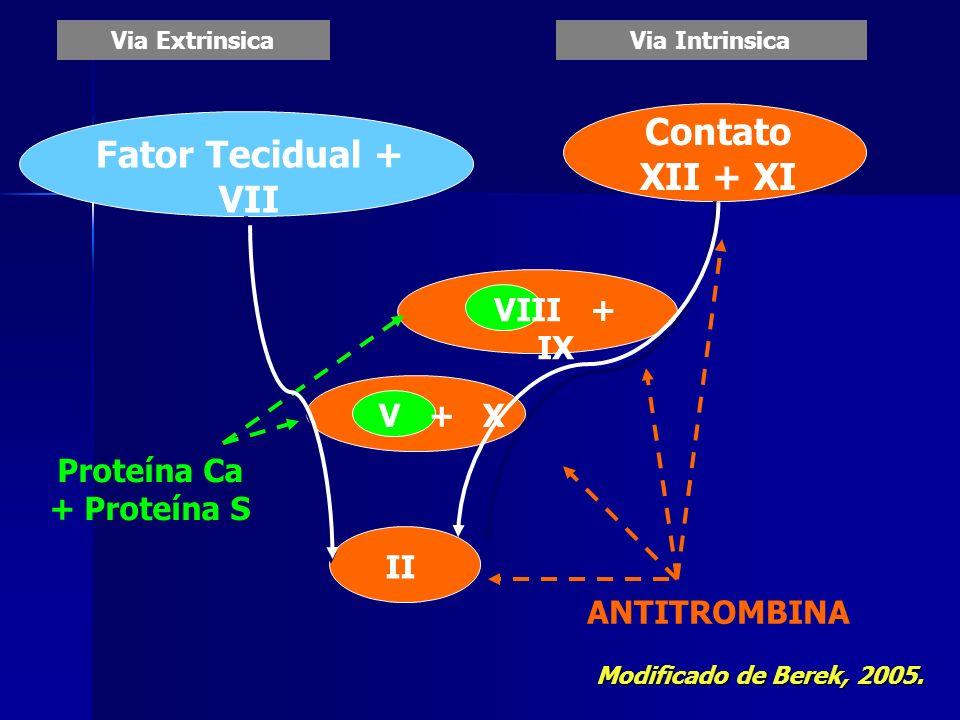 Via ExtrinsicaVia Intrinsica Fator Tecidual + VII Contato XII + XI VIII + IX V + X II ANTITROMBINA Proteína Ca + Proteína S Modificado de Berek, 2005.