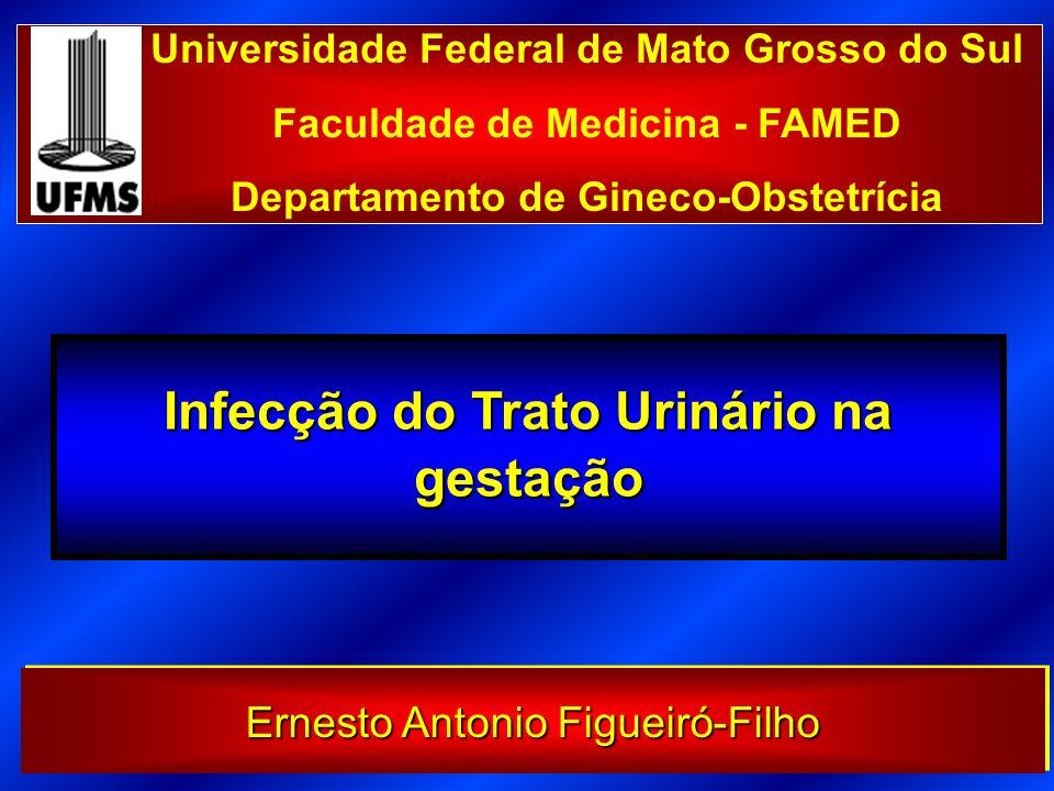 Infecção do Trato Urinário na gestação Universidade Federal de Mato Grosso do Sul Faculdade de Medicina - FAMED Departamento de Gineco-Obstetrícia Ern
