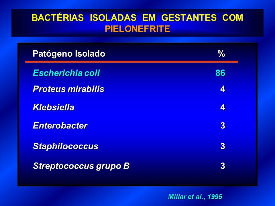 BACTÉRIAS ISOLADAS EM GESTANTES COM PIELONEFRITE Patógeno Isolado % Escherichia coli 86 4 Staphilococcus Streptococcus grupo B Klebsiella Proteus mira