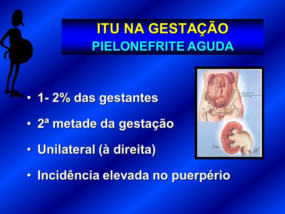 ITU NA GESTAÇÃO PIELONEFRITE AGUDA 1- 2% das gestantes1- 2% das gestantes 2ª metade da gestação2ª metade da gestação Unilateral (à direita)Unilateral