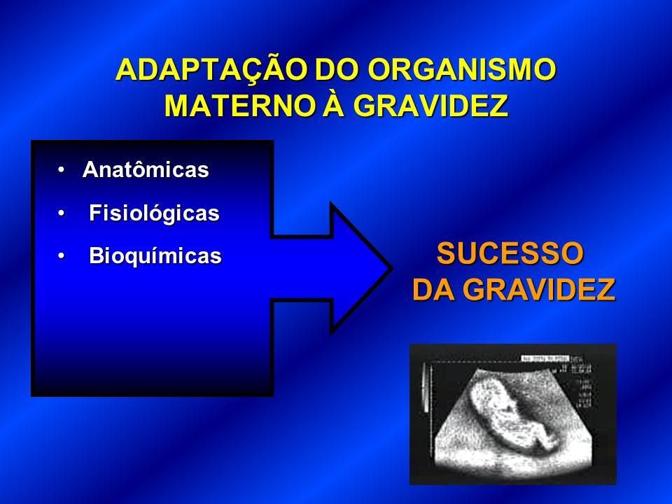 ADAPTAÇÃO DO ORGANISMO MATERNO À GRAVIDEZ AnatômicasAnatômicas Fisiológicas Fisiológicas Bioquímicas Bioquímicas SUCESSO DA GRAVIDEZ