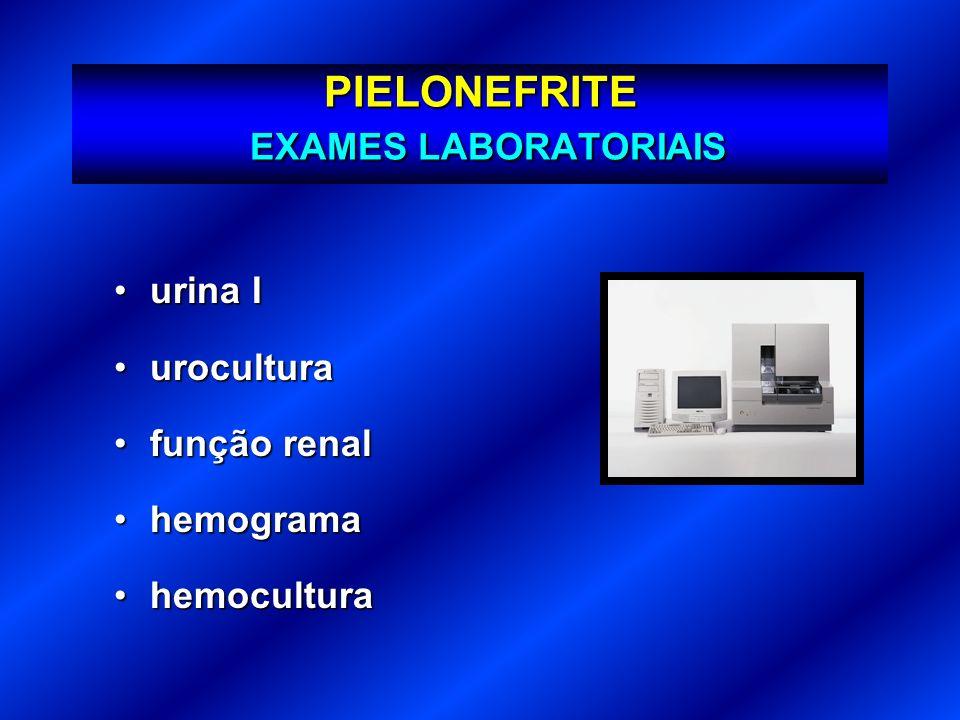 PIELONEFRITE EXAMES LABORATORIAIS urina Iurina I uroculturaurocultura função renalfunção renal hemogramahemograma hemoculturahemocultura