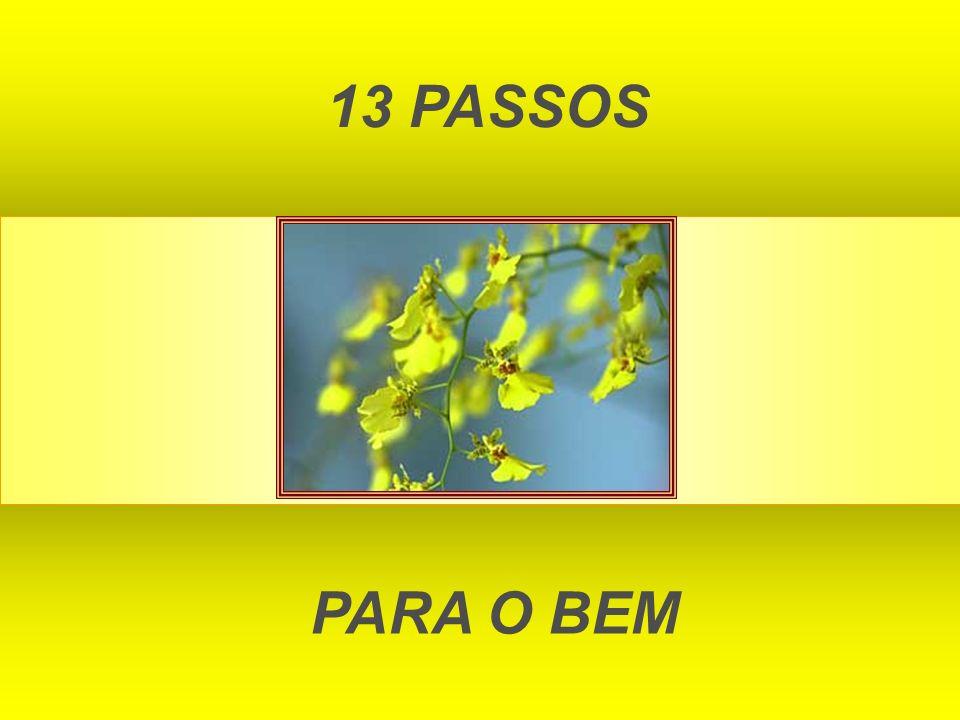 13 PASSOS PARA O BEM
