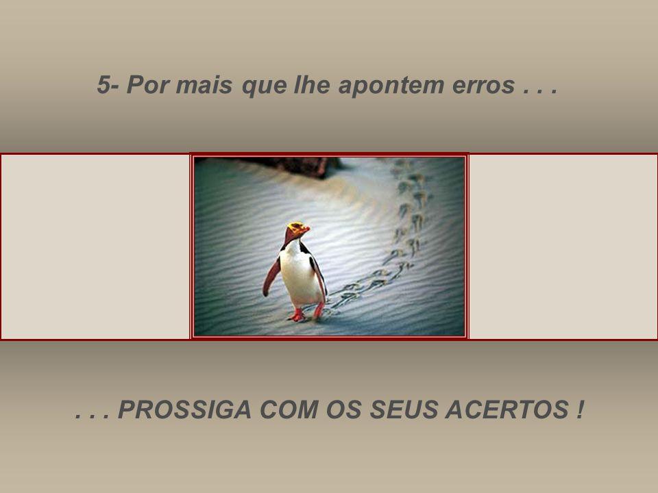 5- Por mais que lhe apontem erros...... PROSSIGA COM OS SEUS ACERTOS !