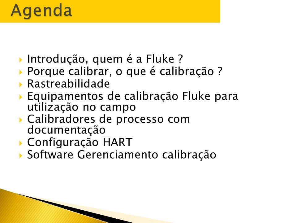 Requisitos para calibração de instrumentos de processos Marcos Leme Fluke do Brasil