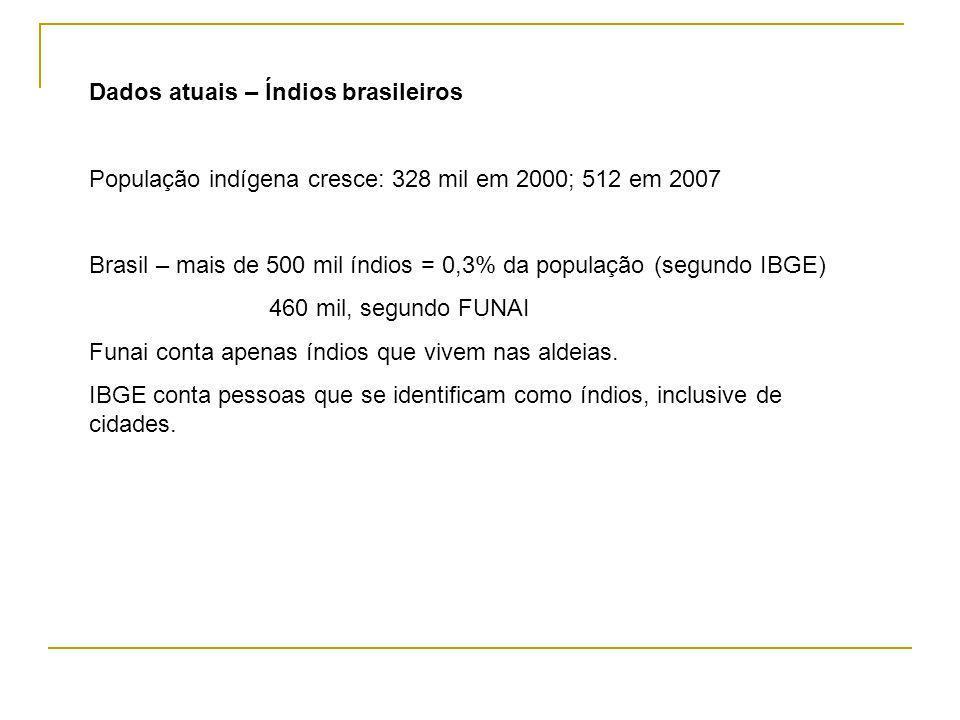 Dados atuais – Índios brasileiros População indígena cresce: 328 mil em 2000; 512 em 2007 Brasil – mais de 500 mil índios = 0,3% da população (segundo IBGE) 460 mil, segundo FUNAI Funai conta apenas índios que vivem nas aldeias.
