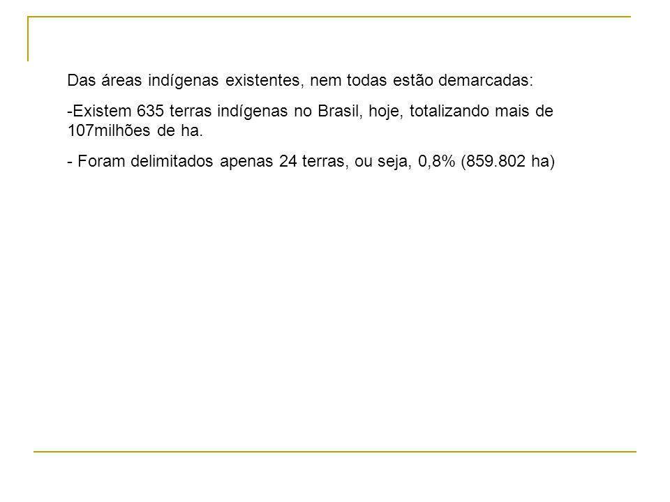 Das áreas indígenas existentes, nem todas estão demarcadas: -Existem 635 terras indígenas no Brasil, hoje, totalizando mais de 107milhões de ha.