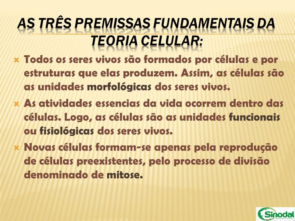 Todos os seres vivos são formados por células e por estruturas que elas produzem. Assim, as células são as unidades morfológicas dos seres vivos. As a