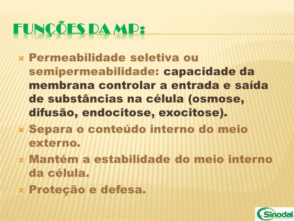 Permeabilidade seletiva ou semipermeabilidade: capacidade da membrana controlar a entrada e saída de substâncias na célula (osmose, difusão, endocitos