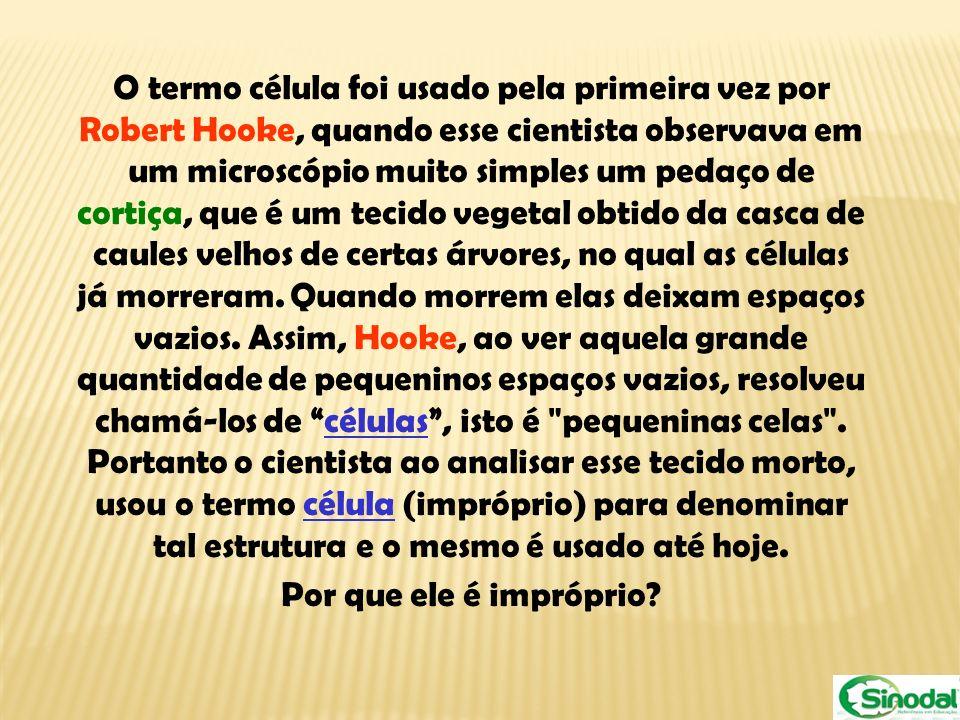 O termo célula foi usado pela primeira vez por Robert Hooke, quando esse cientista observava em um microscópio muito simples um pedaço de cortiça, que