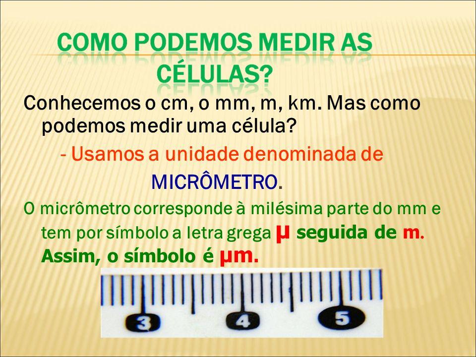 Conhecemos o cm, o mm, m, km. Mas como podemos medir uma célula? - Usamos a unidade denominada de MICRÔMETRO. O micrômetro corresponde à milésima part