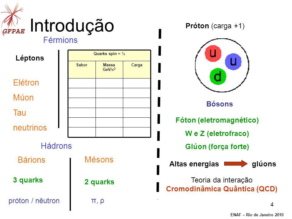 4 Introdução Mésons Bárions Hádrons Elétron Múon Tau neutrinos Férmions Léptons 3 quarks 2 quarks próton / nêutron π, ρ Próton (carga +1) Teoria da interação Cromodinâmica Quântica (QCD) Altas energias glúons Bósons Fóton (eletromagnético) W e Z (eletrofraco) Glúon (força forte) Quarks spin = ½ SaborMassa GeV/c 2 Carga ENAF – Rio de Janeiro 2010