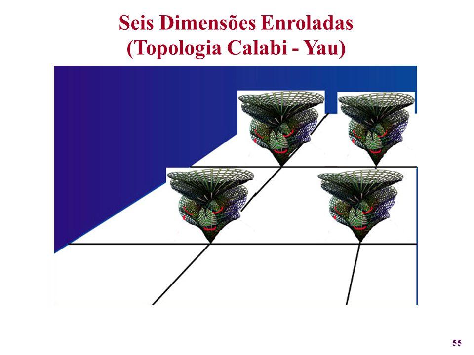 55 Seis Dimensões Enroladas (Topologia Calabi - Yau)