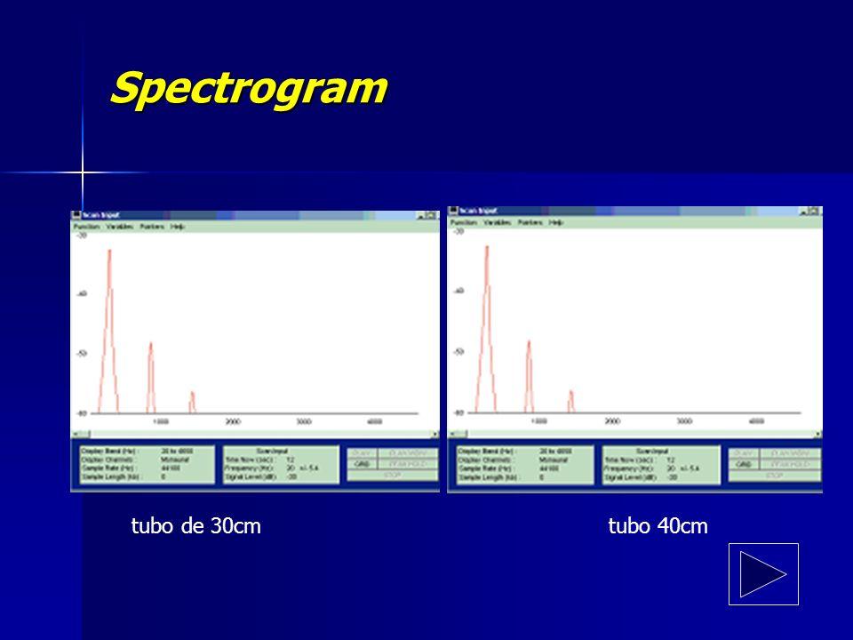 Spectrogram tubo de 30cm tubo 40cm