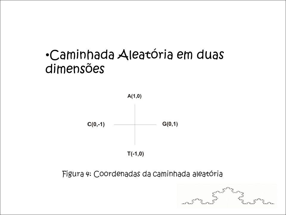 Caminhada Aleatória em duas dimensões Figura 4: Coordenadas da caminhada aleatória