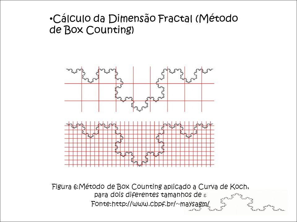 Cálculo da Dimensão Fractal (Método de Box Counting) Figura 6:Método de Box Counting aplicado a Curva de Koch, para dois diferentes tamanhos de ε Fonte:http://www.cbpf.br/~maysagm/