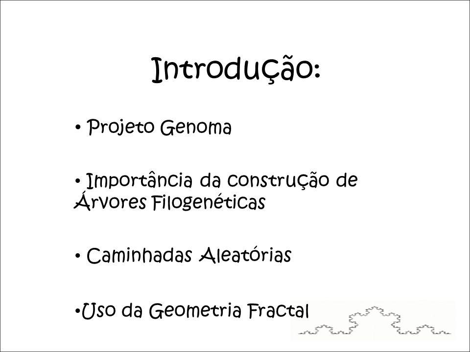 Introdução: Projeto Genoma Importância da construção de Árvores Filogenéticas Caminhadas Aleatórias Uso da Geometria Fractal