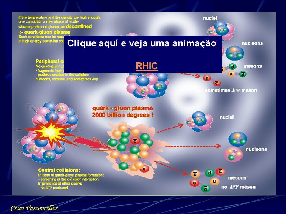Clique aquí e veja uma animação RHIC César Vasconcellos