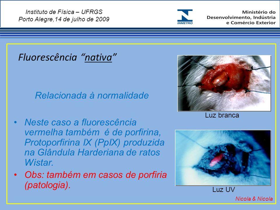 Instituto de Física – UFRGS Porto Alegre,14 de julho de 2009 Fluorescência nativa Nicola & Nicola Relacionada à normalidade Neste caso a fluorescência vermelha também é de porfirina, Protoporfirina IX (PpIX) produzida na Glândula Harderiana de ratos Wistar.